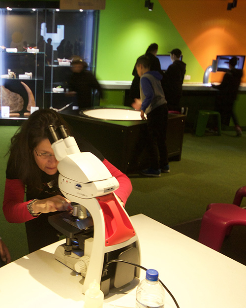 Melanie Rug setting up a light microscope for a demonstration at Questacon