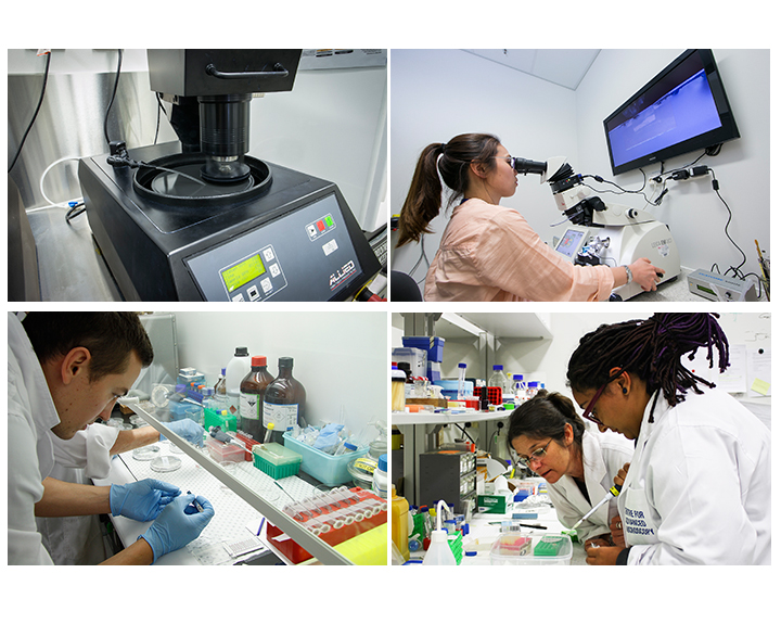 Top left: MetPrep3 polisher. Top right:Joanne Lee using Leica Ultramicrotome EM UC7. Bottom left: Preparing biological samples Bottom right: Melanie Rug looks on while a student prepares a sample.